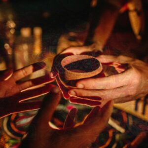 My Ayahuasca Experience and Takeaways